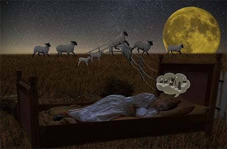 full moon, girl, sleep, sheeps